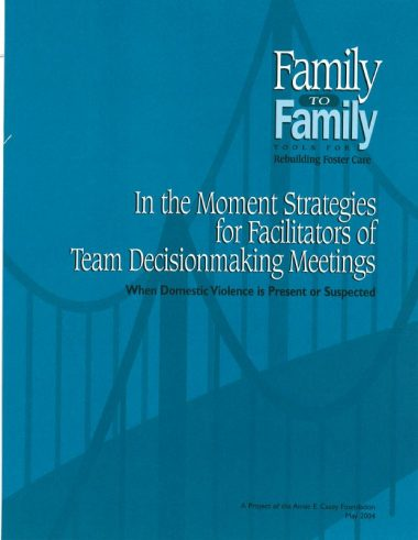 Team Decision Making In the Moment Strategies Cover Img